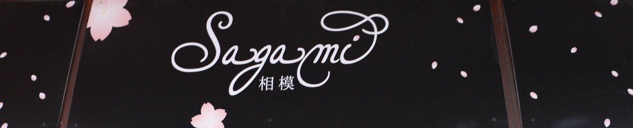 sagami6
